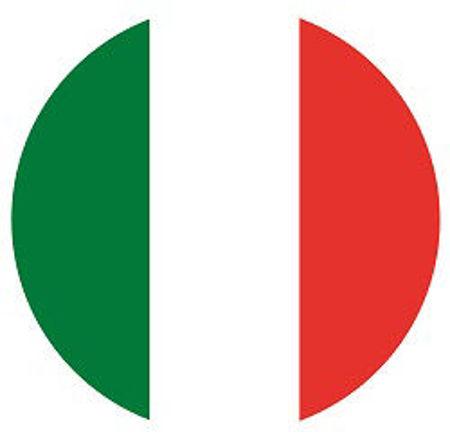 Immagine per la categoria Italiano - 1^ med.